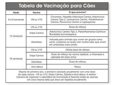 Modelo de tabela de vacinação