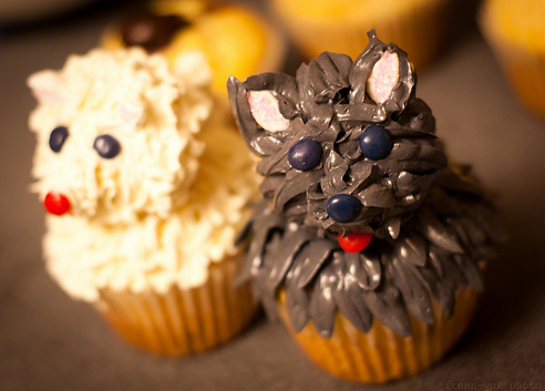 Pupcake – O cupcake do cachorro