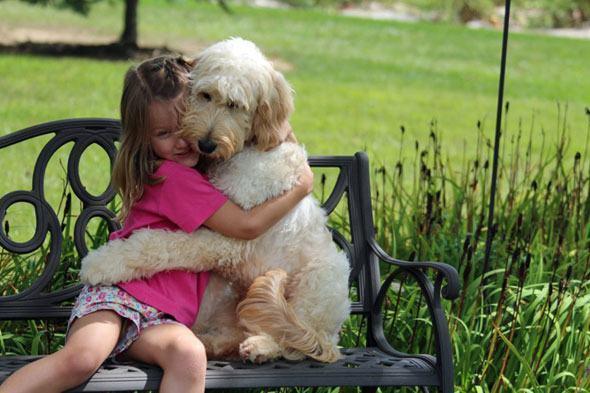 Razões para ter um cachorro