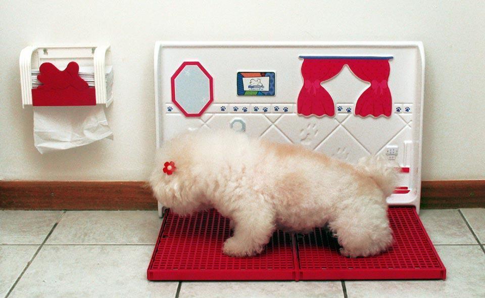 Banheiro para cachorros