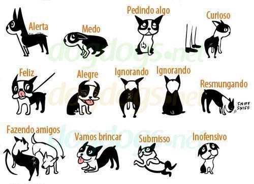 Linguagem dos cães