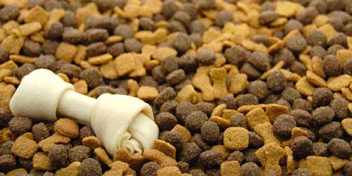 Importância da alimentação balanceada para os cães