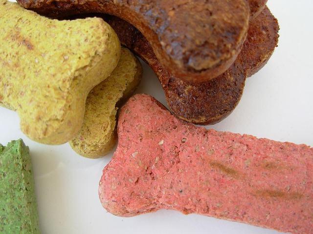 Aprenda deliciosas receitas de biscoitos caninos