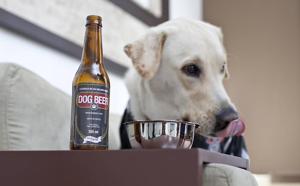 Diferente da humana, cerveja canina não contém álcool