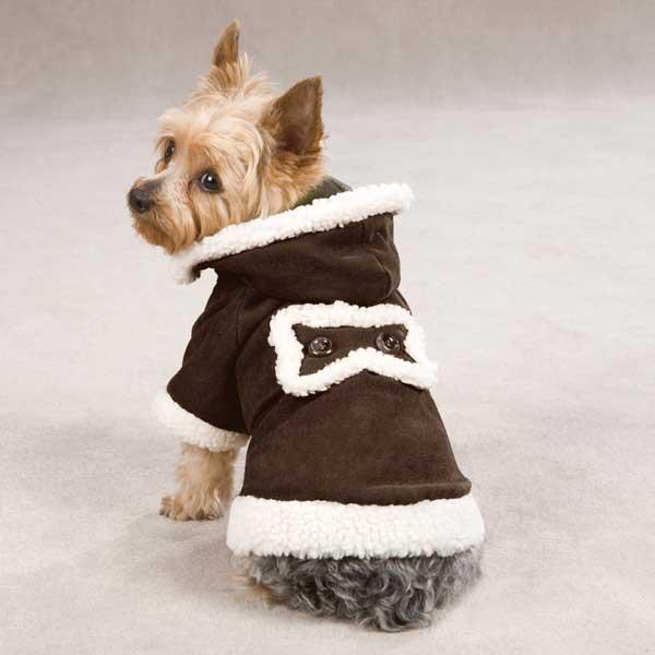 Roupas para agasalhar cães neste inverno