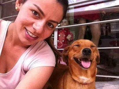 Internauta Luana Giarola compartilhou foto da sua cadela
