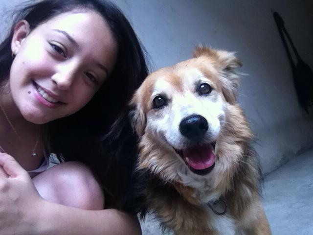A Karina Padovan tocou no nosso ponto fraco: cães idosos! Não resistimos a esses peludos da terceira idade, e o Rex nos conquistou ainda mais com esse sorriso lindo!