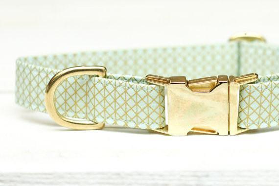 Coleira verde hortelã com peças douradas