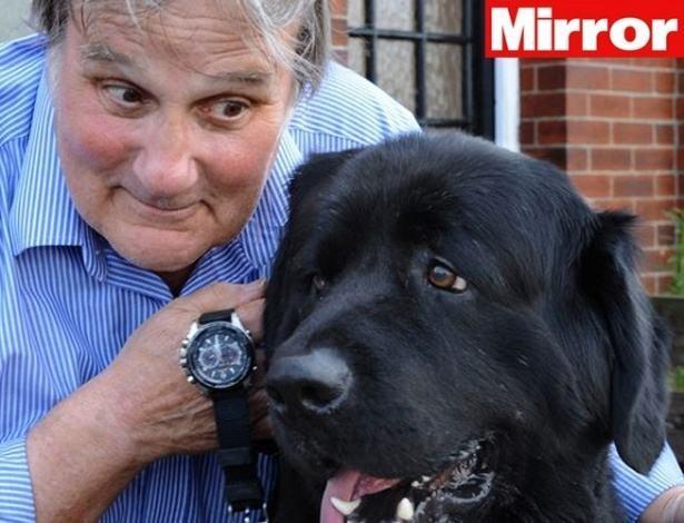 Saiba por que seu cão parece saber as horas