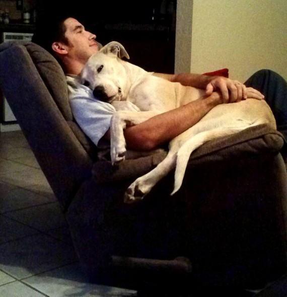 Homem com cão em poltrona