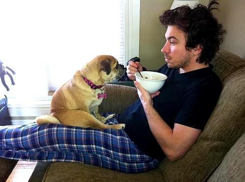 Homem e cão comendo juntos