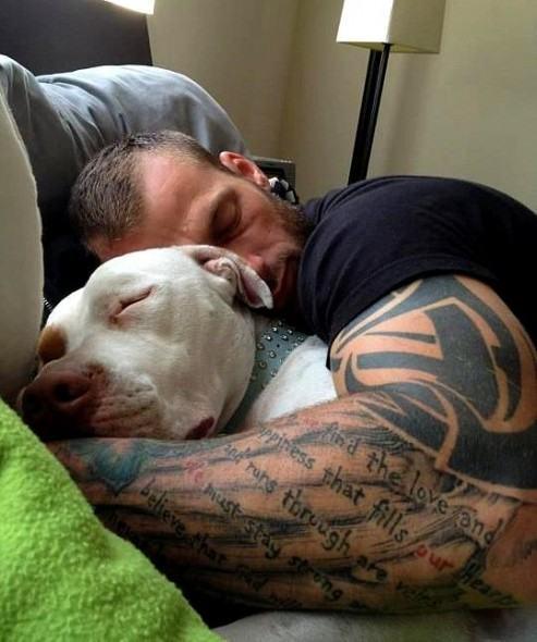 Homem e cão dormindo juntos