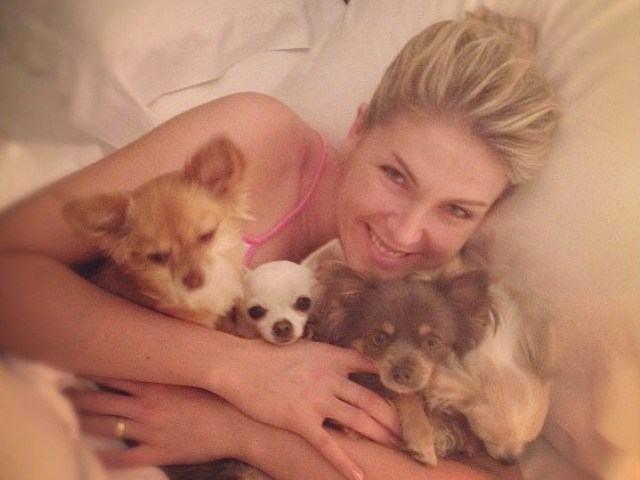 Ana Hickmann e seus cães