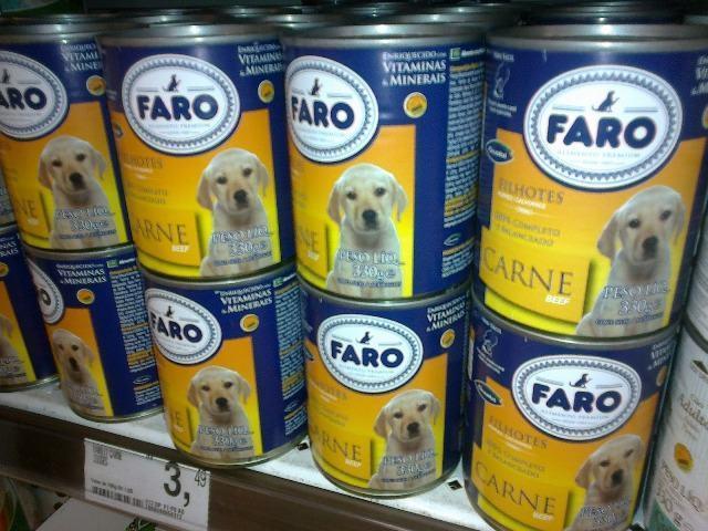Em tempos de crise, saiba como economizar nas despesas com seu cão