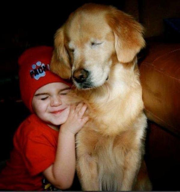 Incrível história de cão cego que virou terapeuta