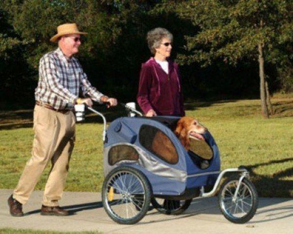 Transforme o carrinho de bebê em carrinho para cachorro