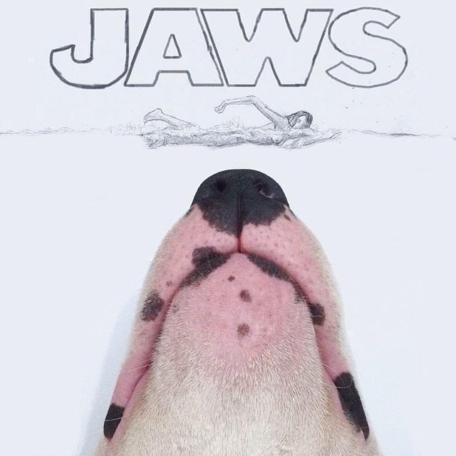 jimmy-bull-terrier-poster-filme-tubarão