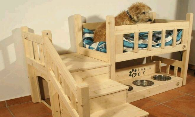 cama-cachorro-grande
