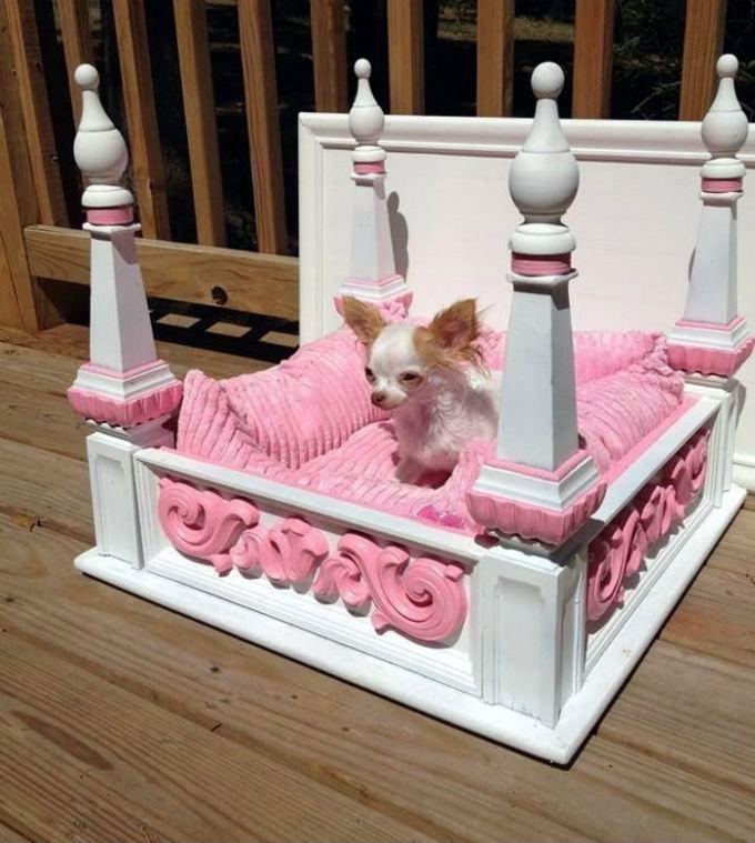 cama-de-cachorro-princesa