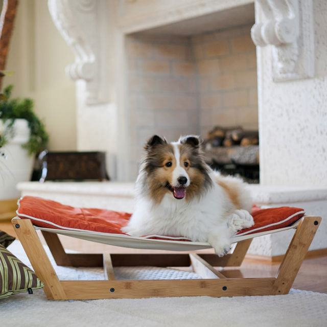 cama-estilo-rede-para-cao