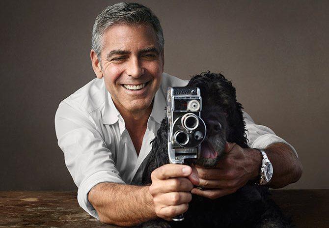 Conheça Einstein, o cãozinho adotado pelo ator George Clooney