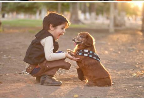 criança-vestida-de-hansolo-e-cachorro-chewbaca