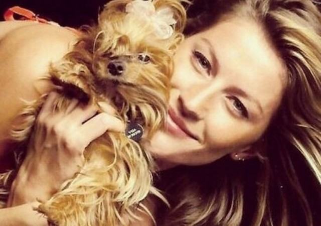 Gisele Bündchen lança livro e dedica a sua cadelinha
