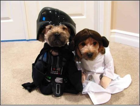 pai-e-filha-darthvader-e-princesaleia-cachorros