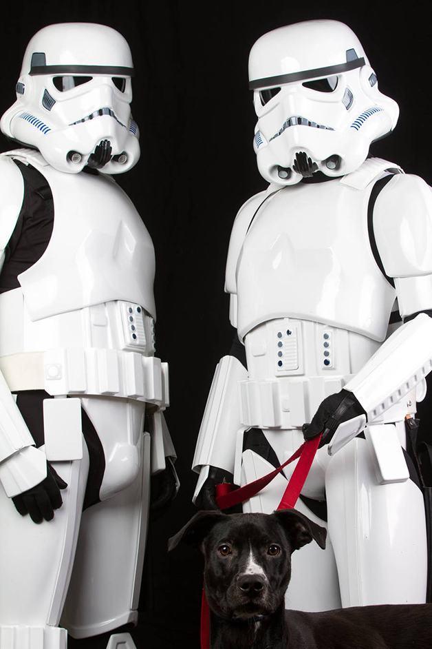 stormtroopers-com-caozinho-em-coleira