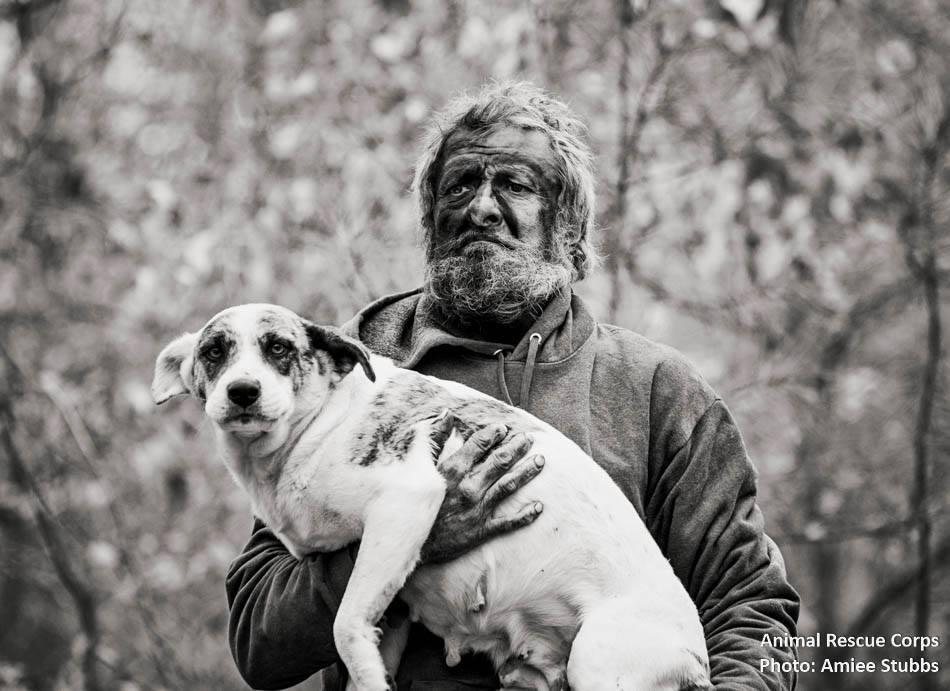 homem-vivia-em-parque-com-31-cachorros