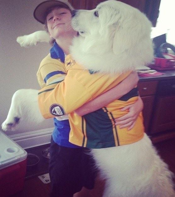 cachorro-gradao-abraçando-garoto-camisa-de-futebol