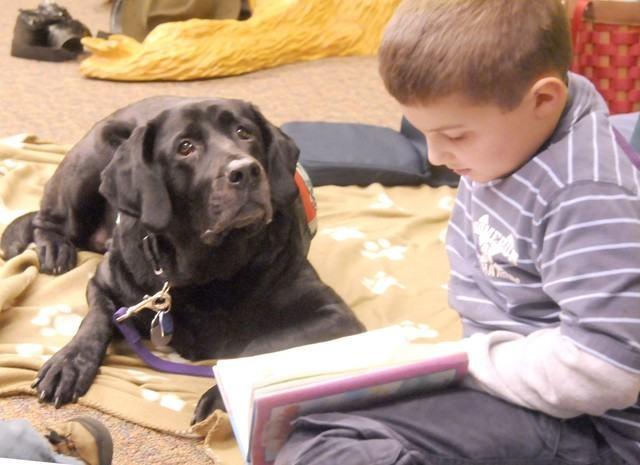 Cães podem auxiliar crianças na aprendizagem da leitura