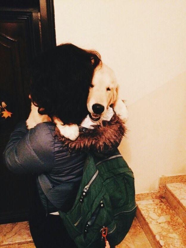 dona-abraçando-seu-cachorro-apos-chegar-em-casa