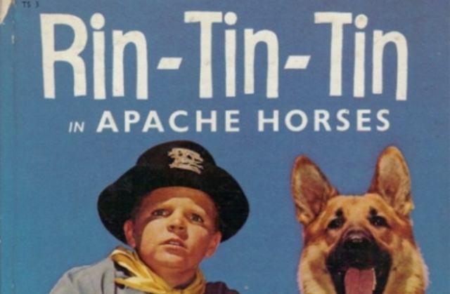 A incrível história de Rin Tin Tin