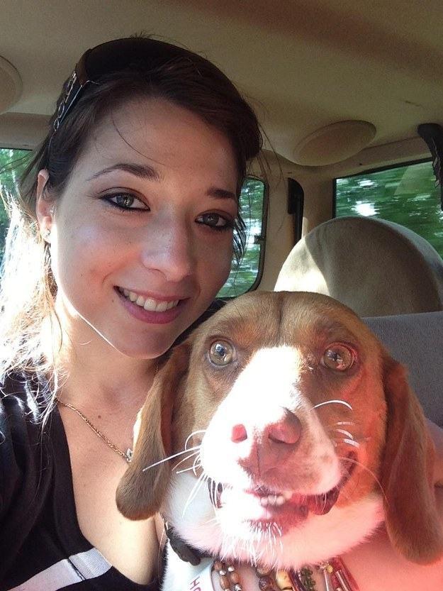 cachorro-paralizado-de-felicidade