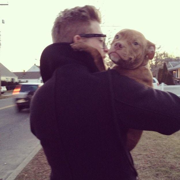 filhote-de-pitbull-no-braço-de-seu-novo-dono