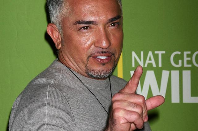 Adestrador, apresentador de TV e escritor Cesar Millan