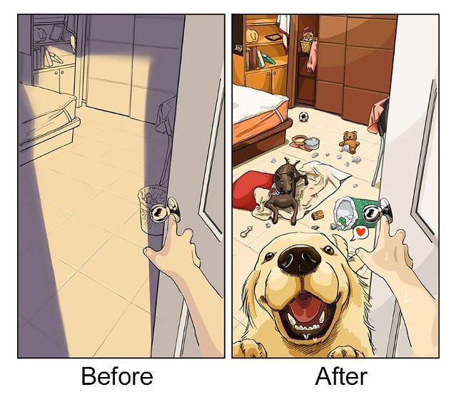 antes-e-depois-de-adotar-1