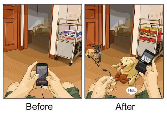 antes-e-depois-de-adotar-5