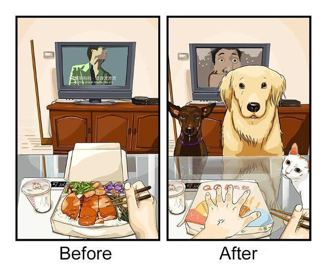 antes-e-depois-de-adotar-6