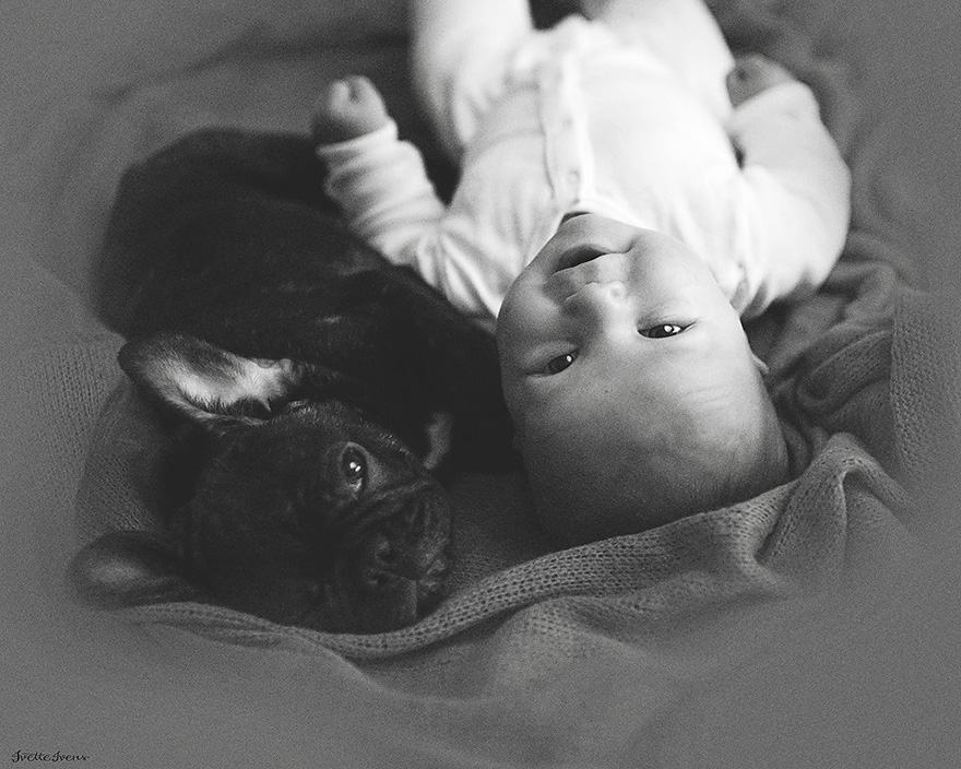 amizade-entre-filhote-humano-e-canino
