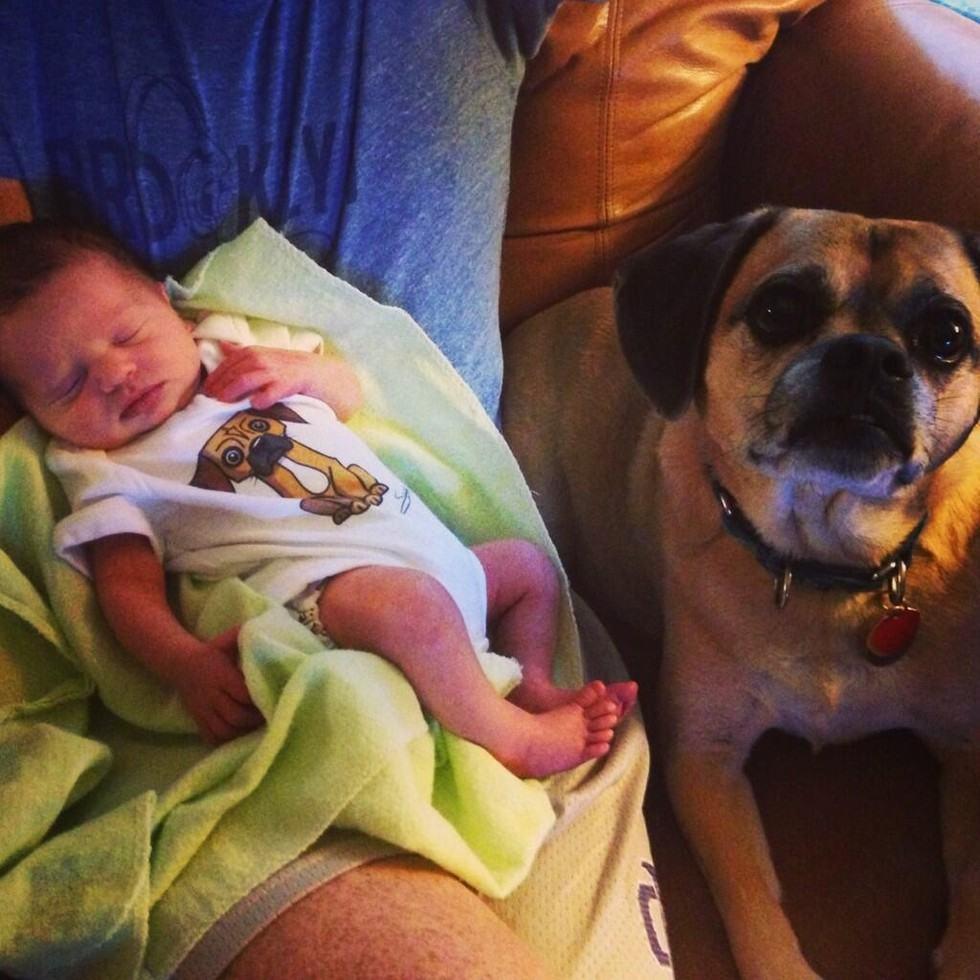 cachorro-tomando-conta-de-bebe