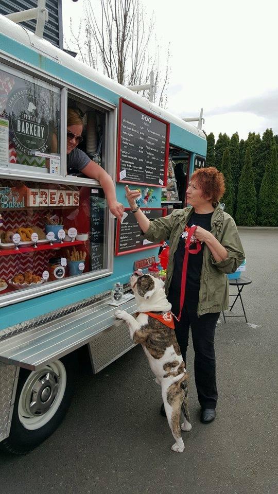 food-truck-para-caes