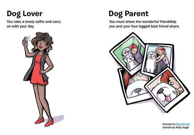 ilustração-diferença-pessoa-que-gosta-de-caes-e-tutor-de-cao