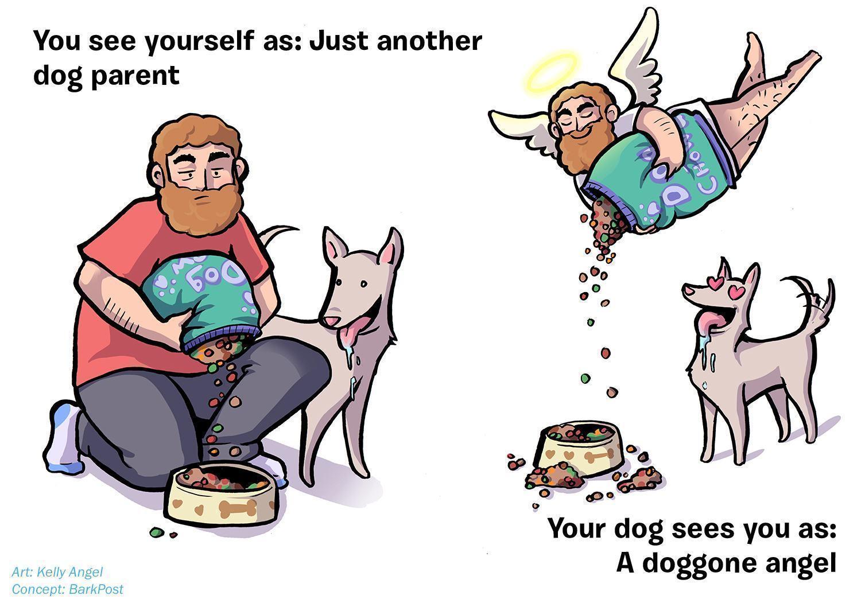 ilustrações-mostram-como-seu-cão-acha-você-perfeito-apesar-de-tudo-3