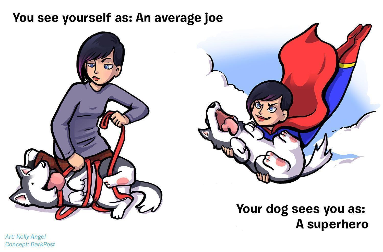 ilustrações-mostram-como-seu-cão-acha-você-perfeito-apesar-de-tudo-4