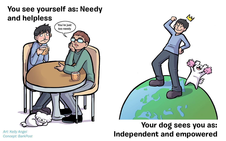 ilustrações-mostram-como-seu-cão-acha-você-perfeito-apesar-de-tudo-7