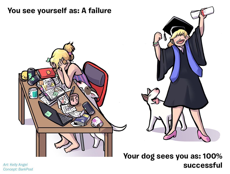 ilustrações-mostram-como-seu-cão-acha-você-perfeito-apesar-de-tudo