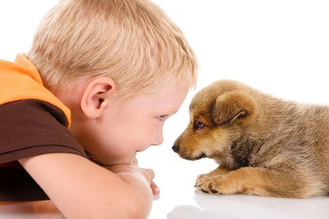 imagem-crianca-olhando-no-olho-de-cao
