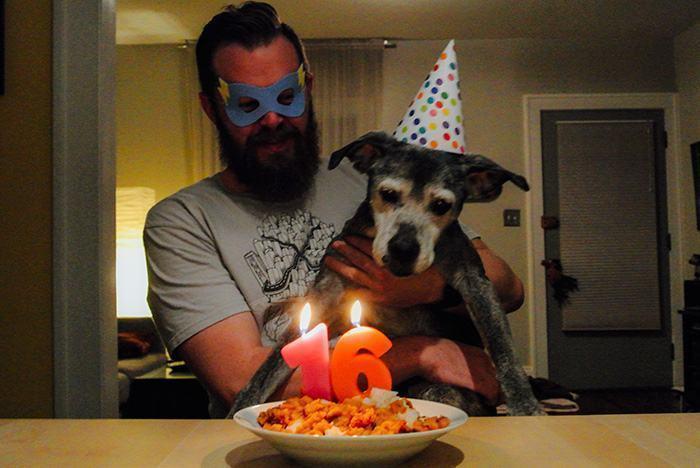 cachorro-idoso-comemorando-aniversario